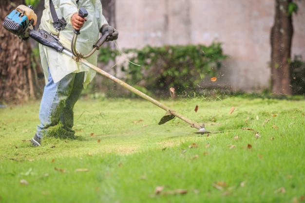Za travo, bolj zeleno od sosedove