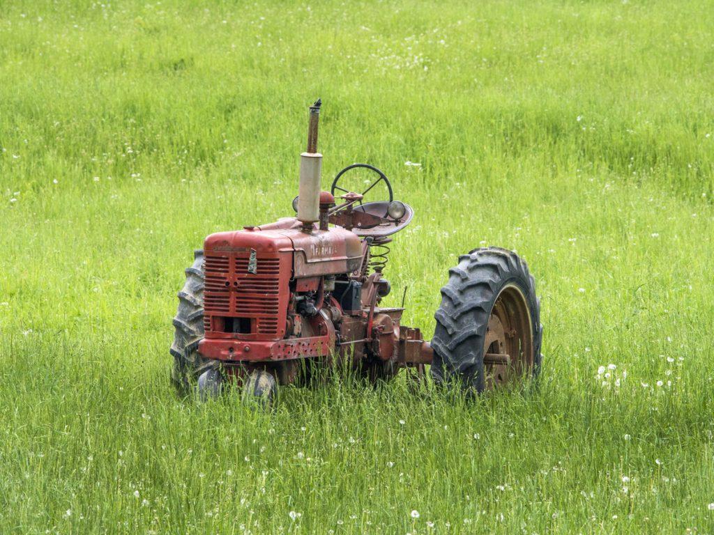 Okopavanje večjih nasadov koruze